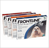 Frontline Plus