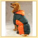 Casual Canine Base Camp Parkas - Green & Orange