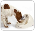 Petmate Deluxe Fresh Flow Pet Fountain � Medium
